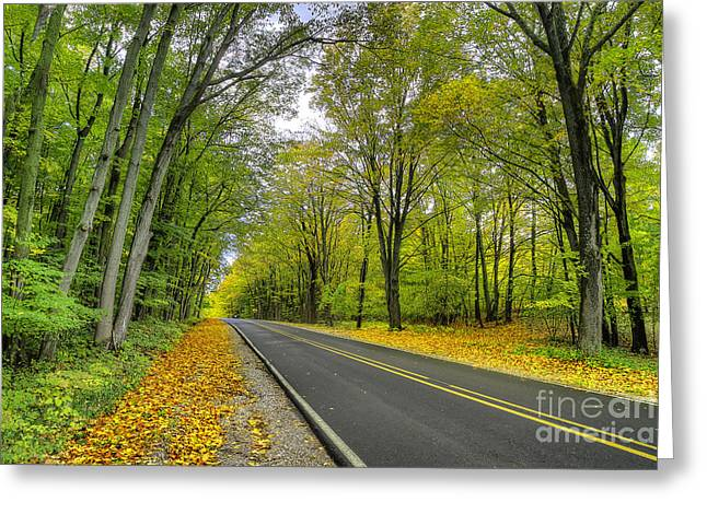 Joyfield Road In Arcadia Greeting Card by Twenty Two North Photography