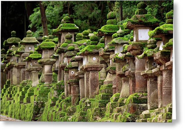 Kasuga-taisha Shrine In Nara, Japan Greeting Card by Paul Dymond
