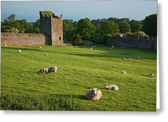 Kells Priory  Count Kilkenny, Ireland Greeting Card by Carl Bruemmer
