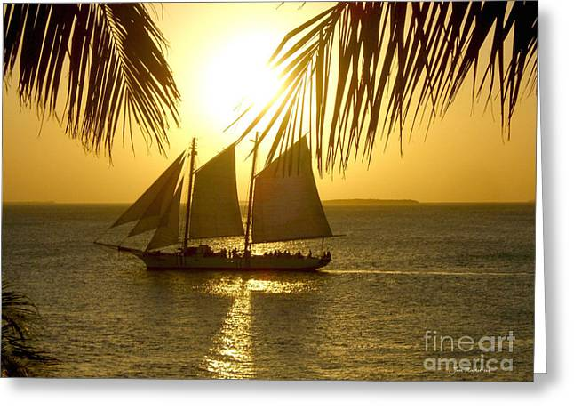 Key West Sunset Greeting Card by Joan  Minchak