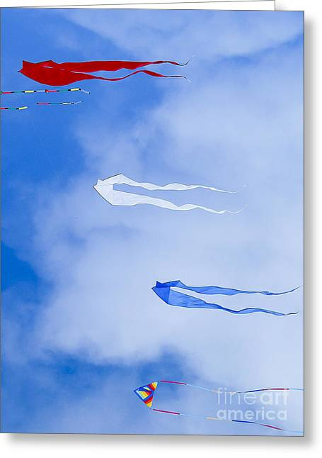 Kites On Ice Greeting Card by Steven Ralser