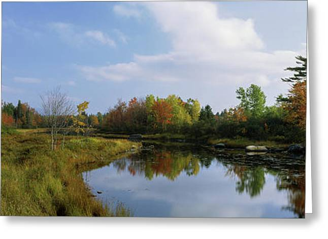 Lake In A Forest, Mount Desert Island Greeting Card
