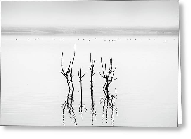 Lake Reflections Greeting Card by George Digalakis