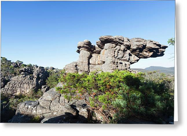 Landscape In The Grampians National Greeting Card by Martin Zwick