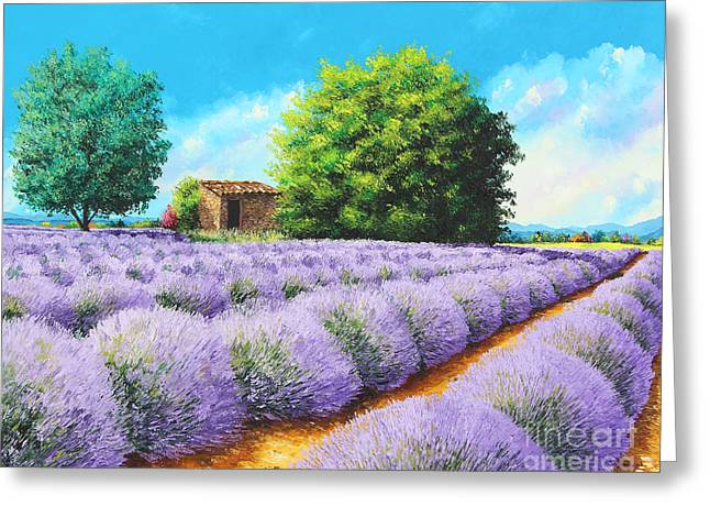 Lavender Lines Greeting Card by Jean-Marc Janiaczyk