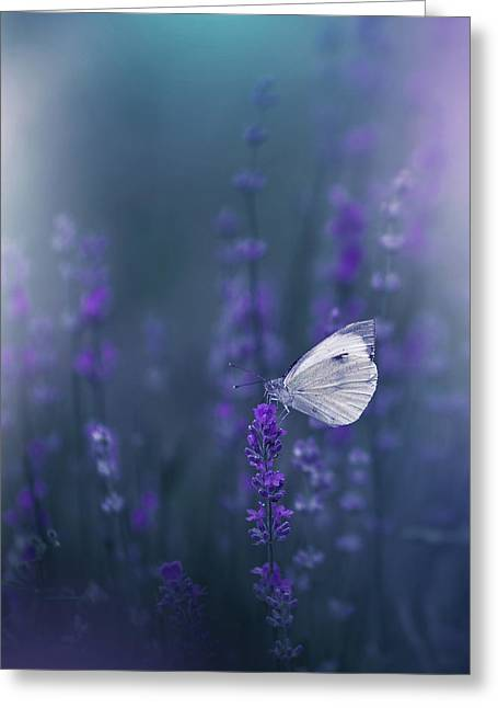 Lavender Queen... Greeting Card by Juliana Nan