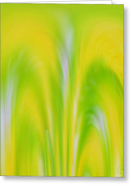 Lemon Lime Greeting Card by Patricia Kay