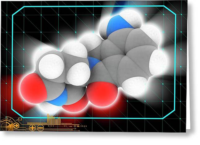 Lenalidomide Drug Molecule Greeting Card by Laguna Design/science Photo Library