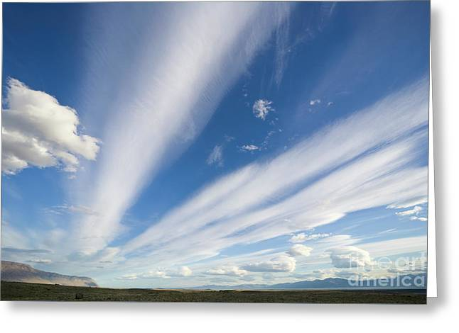 Lenticular And Cumulus Clouds Patagonia Greeting Card by Yva Momatiuk John Eastcott