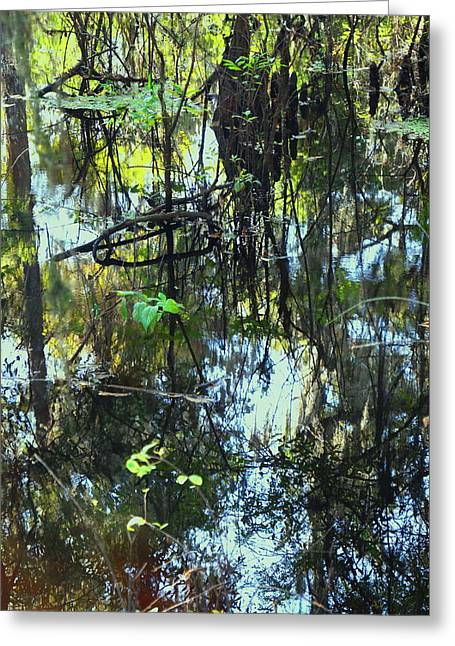 Lettuce Lake Abstract Greeting Card