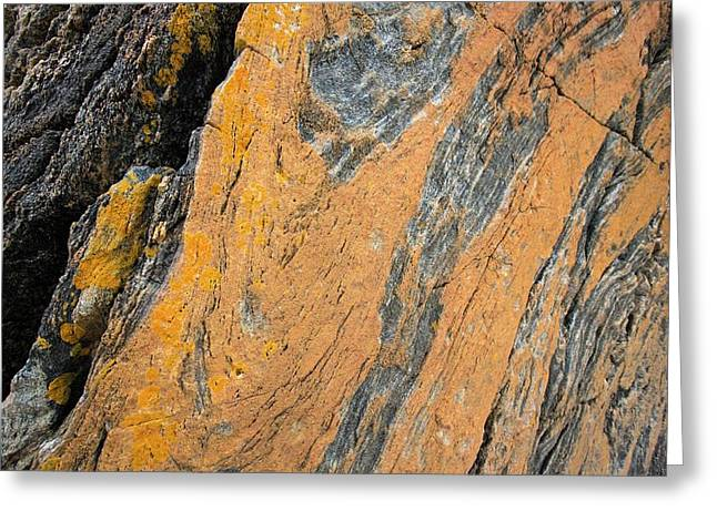 Lewisian Gneiss Greeting Card by Ashley Cooper