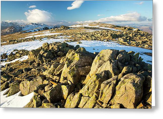 Lichen Covered Rocks Greeting Card
