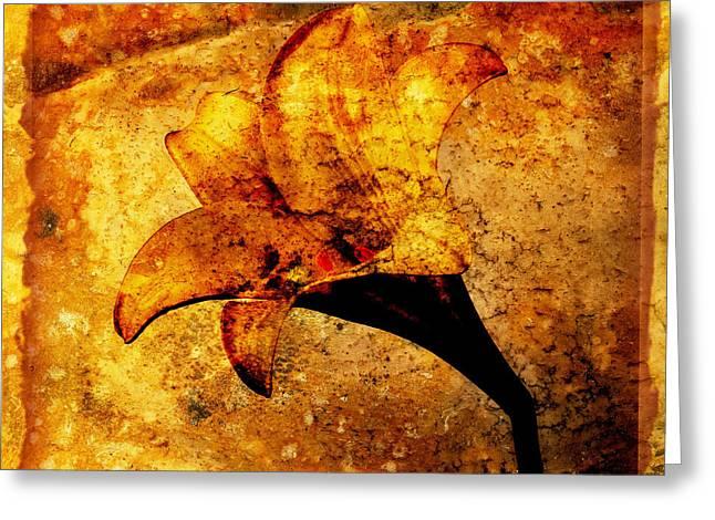 Lily Greeting Card by Bernard Jaubert