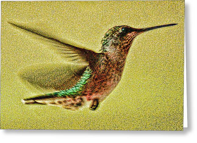 Little Wings Greeting Card by Joe Bledsoe