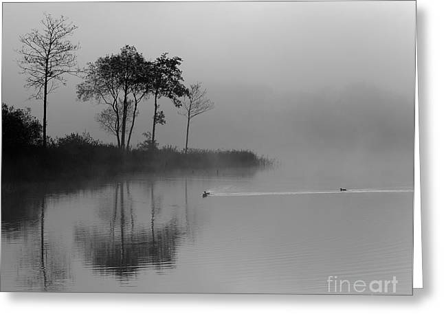 Loch Ard Trees In The Morning Mist Greeting Card