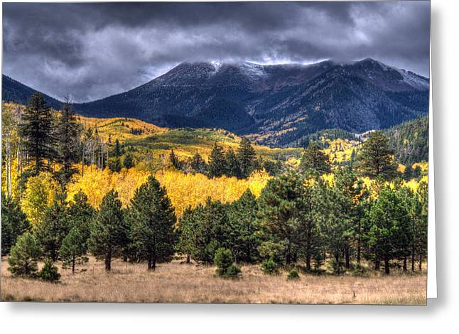 Lockett Meadow Greeting Card