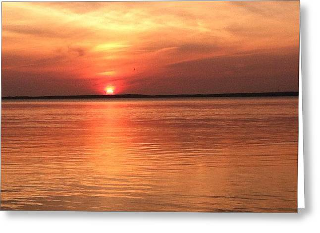 Long Island Ny Shore Greeting Card by Mike Mancini