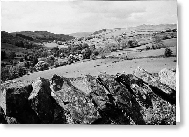 Longsleddale Valley Cumbria Uk Greeting Card