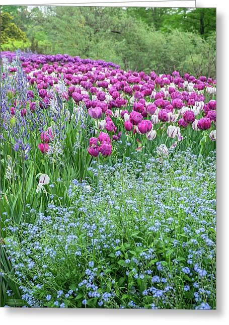 Longwood Gardens, Spring Flowers Greeting Card