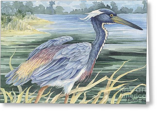 Louisiana Heron Greeting Card by Paul Brent