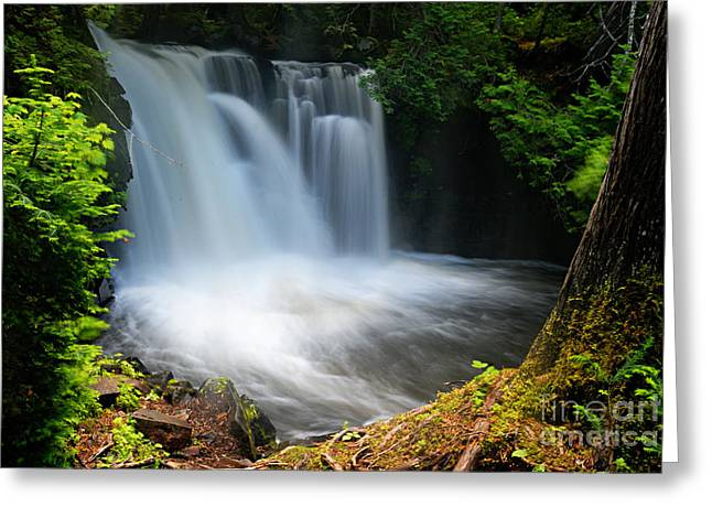 Lower Johnson Falls Greeting Card by Larry Ricker