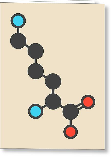 Lysine Amino Acid Molecule Greeting Card by Molekuul