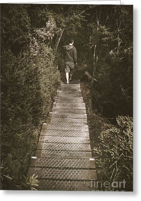 Male Hiker Walking On A Rainforest Wooden Bridge Greeting Card