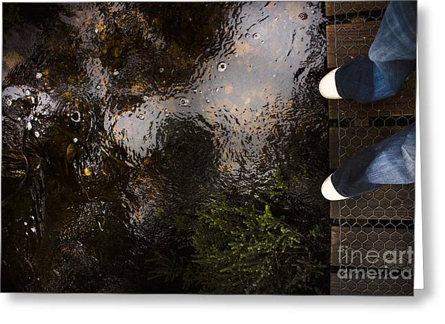 Man Standing On A Rainforest Boardwalk Greeting Card by Jorgo Photography - Wall Art Gallery