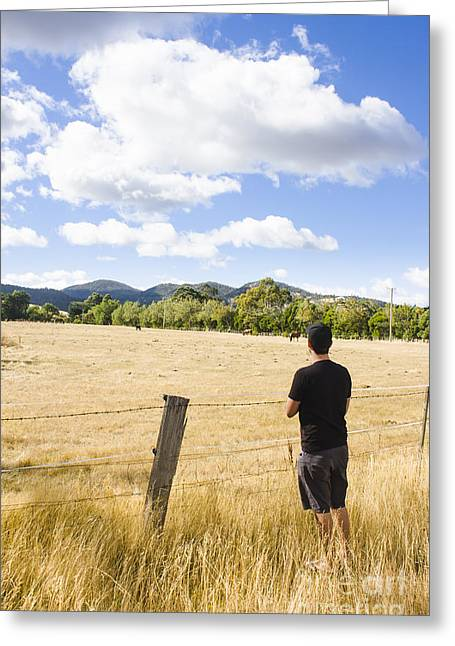 Man Watching Cattle On An Australian Country Farm Greeting Card