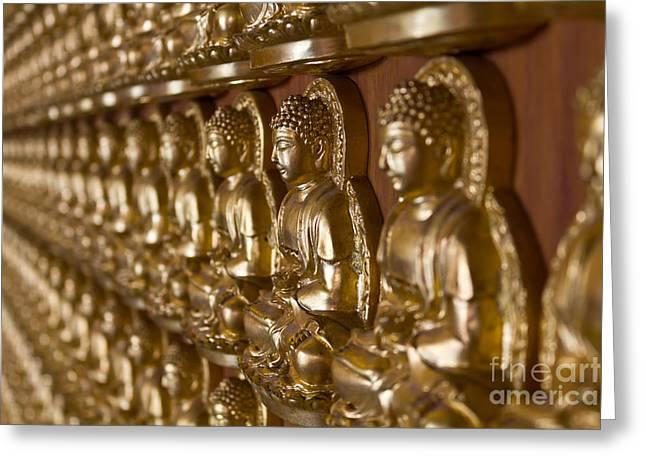 Many Image Of Buddha On Wall Greeting Card