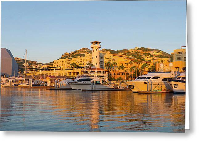 Marina, Cabo San Lucas, Baja, Mexico Greeting Card by Douglas Peebles