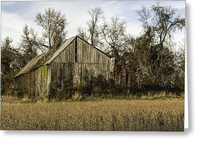 Maryland Barns Greeting Card