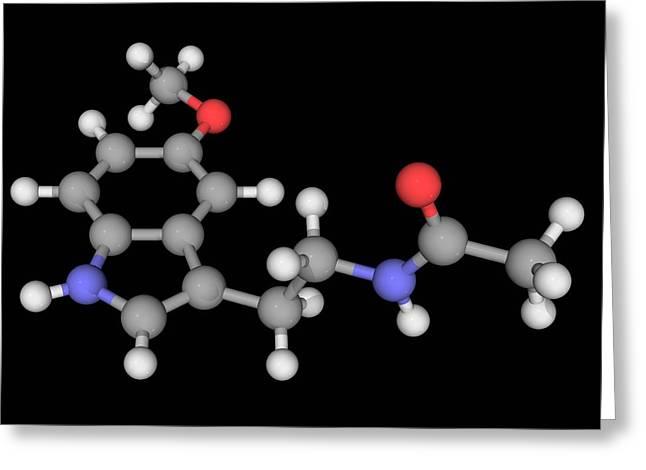 Melatonin Molecule Greeting Card by Laguna Design/science Photo Library