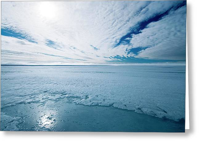 Melting Arctic Sea Ice Greeting Card by Louise Murray/science Photo Library