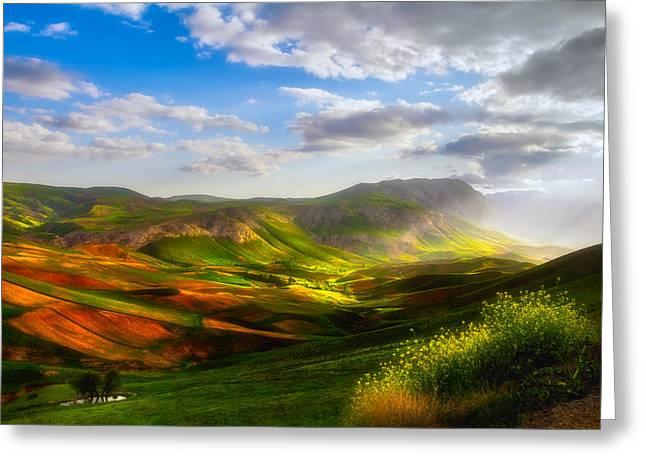 Merciful Fields Greeting Card by Niloufar Hoseinzadeh