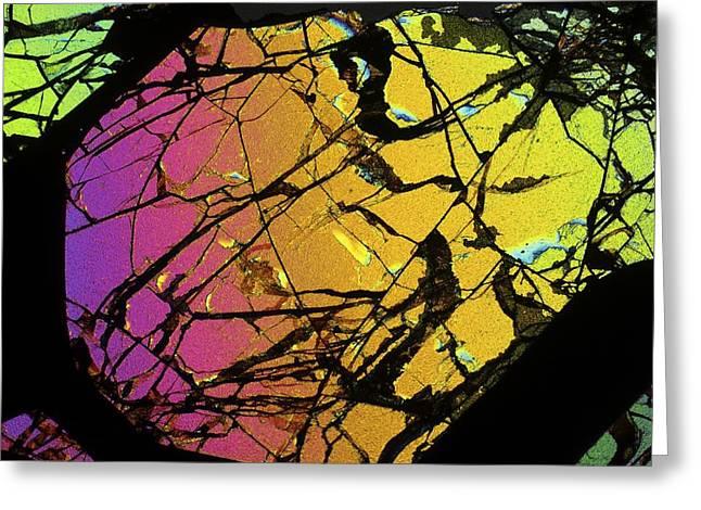 Meteorite Brenham Greeting Card by Alfred Pasieka