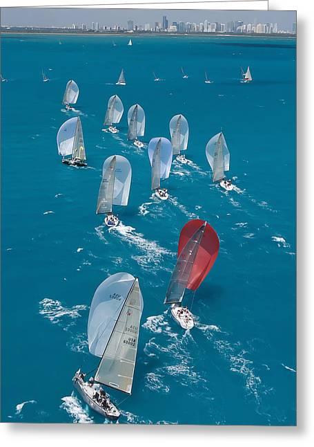 Miami Beach Regatta Greeting Card by Steven Lapkin