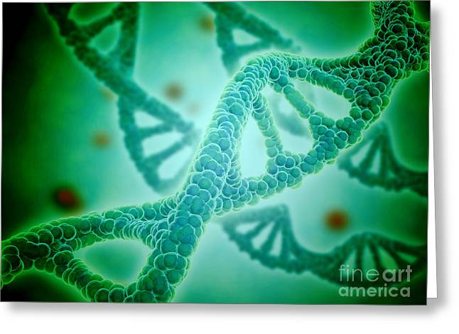 Microscopic View Of Dna Greeting Card by Stocktrek Images