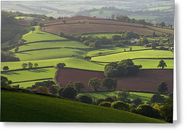Mid Devon Fields Greeting Card by Pete Hemington