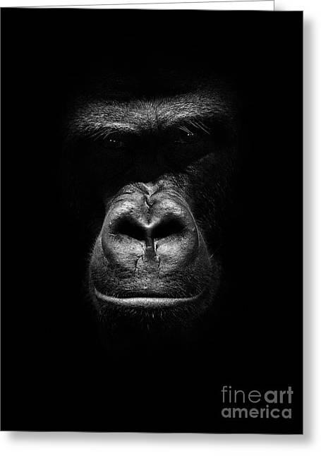 Mighty Gorilla Greeting Card by Jaroslaw Blaminsky