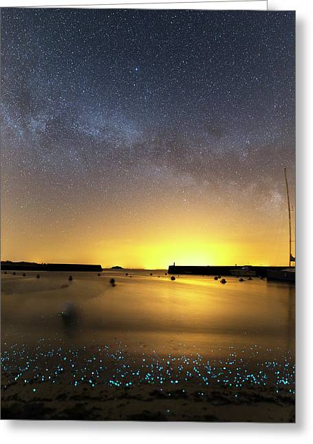 Milky Way Over Bioluminescent Plankton Greeting Card