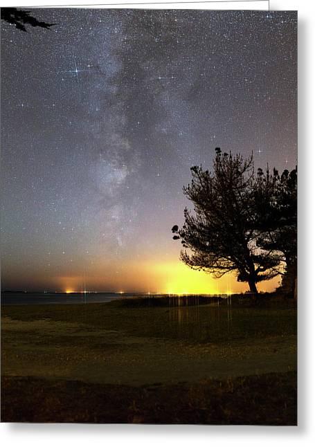 Milky Way Over Coastal Trees Greeting Card
