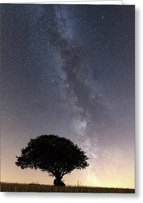 Milky Way Over Tree Greeting Card