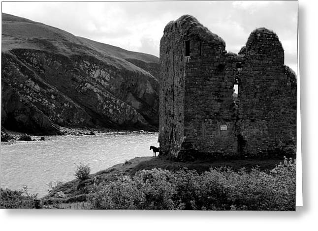 Minard Castle In Kerry Greeting Card by Barbara Walsh
