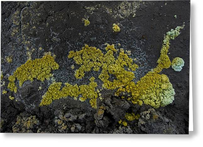 Mineral Texture Greeting Card by Pablo Romero