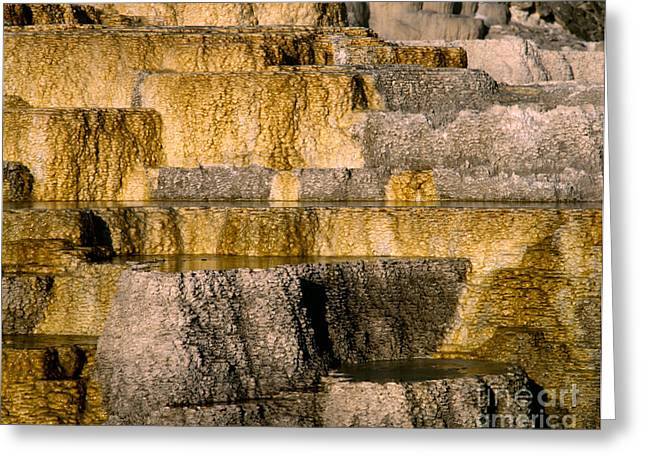 Minerva Terrace Greeting Card by Tracy Knauer