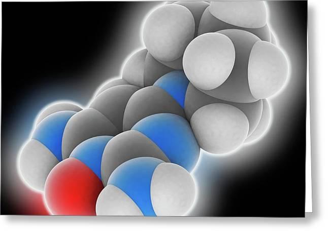 Minoxidil Drug Molecule Greeting Card