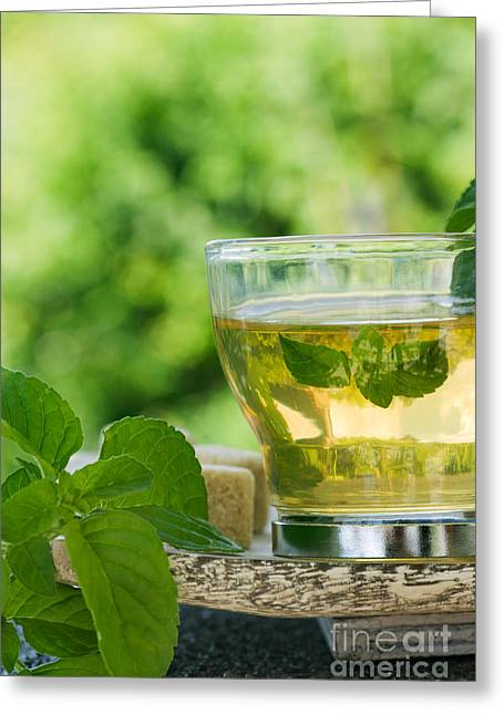 Mint Tea Greeting Card by Mythja  Photography