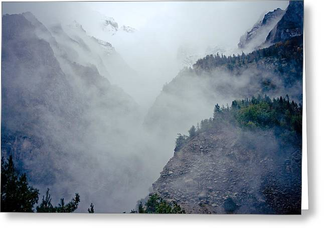 Greeting Card featuring the photograph Mist In Mountain Mystery Forest by Raimond Klavins
