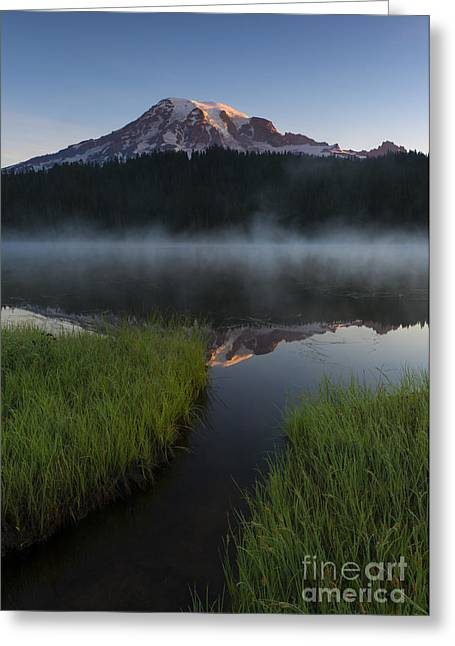 Misty Majesty Greeting Card by Mike Dawson